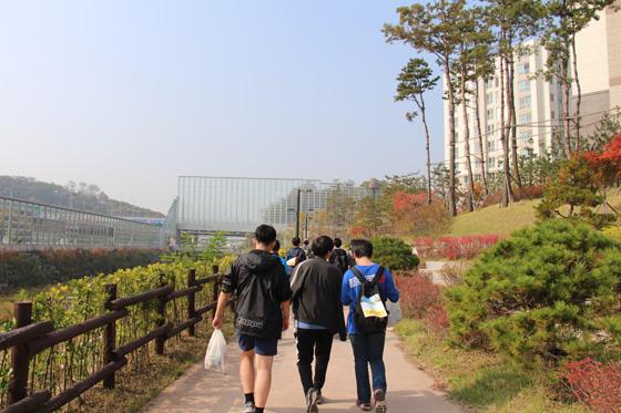 141018walk (11)
