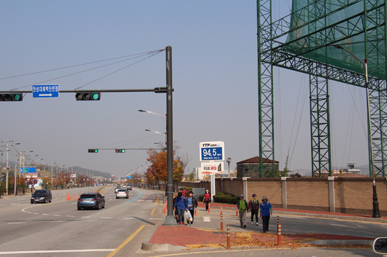 141018walk (21)