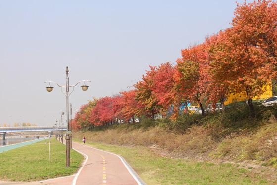 141018walk (28)