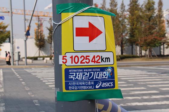 141018walk (32)