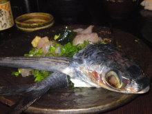 佐藤智恵のオフィシャルブログ-SN3J0123.jpg