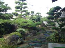 ソプラノ歌手♪佐藤智恵のオフィシャルブログ-SN3J0195.jpg