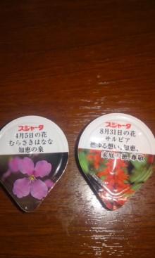 ソプラノ歌手♪佐藤智恵のオフィシャルブログ-101122_2308~01.jpg