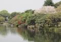 shinjyuku-6.jpg
