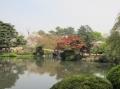 shinjyuku-9.jpg