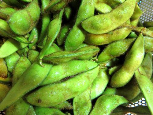毛深い枝豆