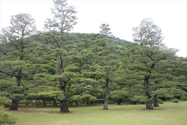 5 21 高松→徳島002