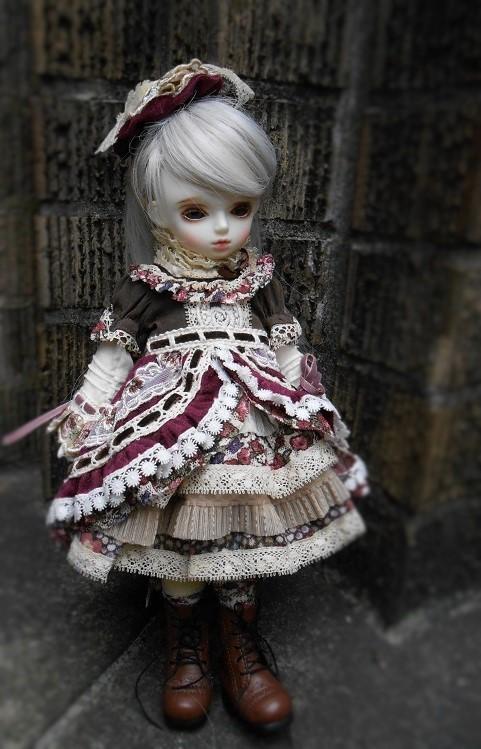 141105 ローゼンリード 4 (2)