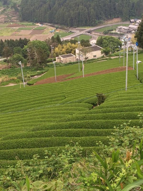 206日目(5/14)静岡市ゆう遊 ...