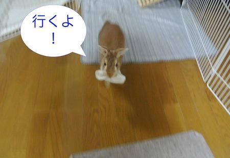 DSC_1885.jpg