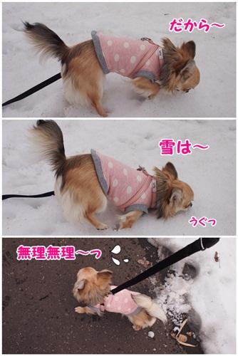 冷たいよ~