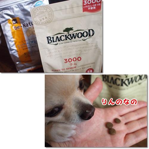 ブラックウッド3000