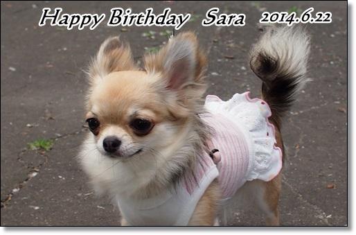 沙羅お誕生日おめでとう♪