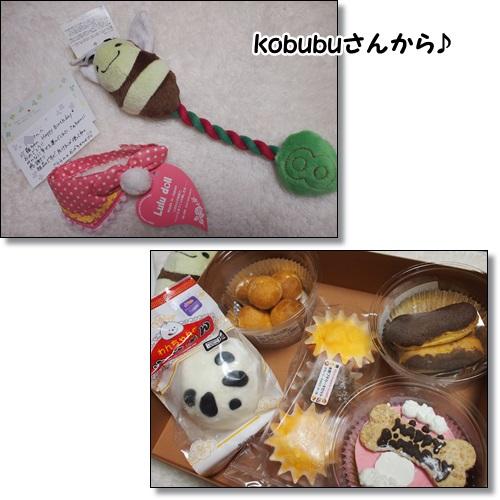 kobubuさんたくさんありがとう!