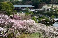 里の池から見た梅園と潮見亭