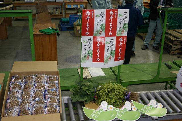 yahiko20141.jpg