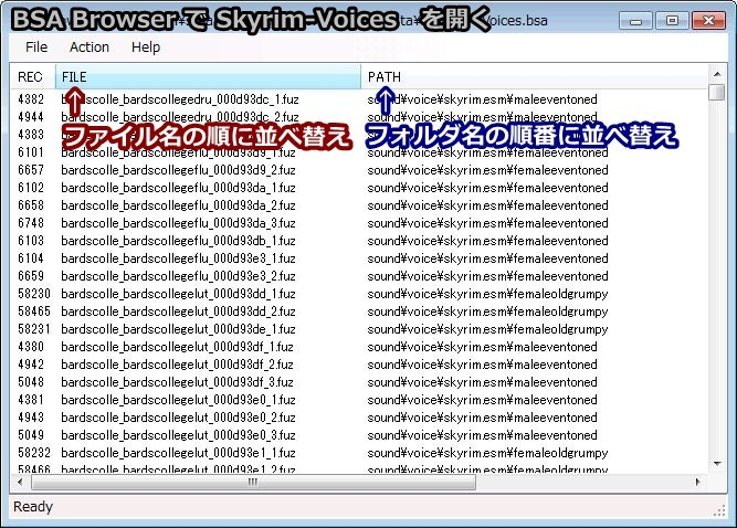The Way Of The Voice-BSA Browser 起動した