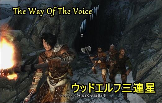 The Way Of The Voice-伝説のウッドエルフたち