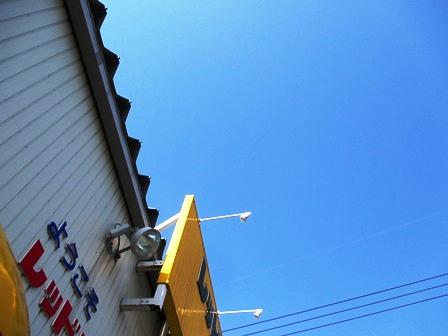 mikuIMG_3524.jpg