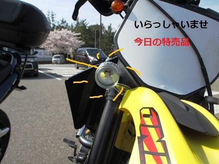 mikuIMG_3549.jpg