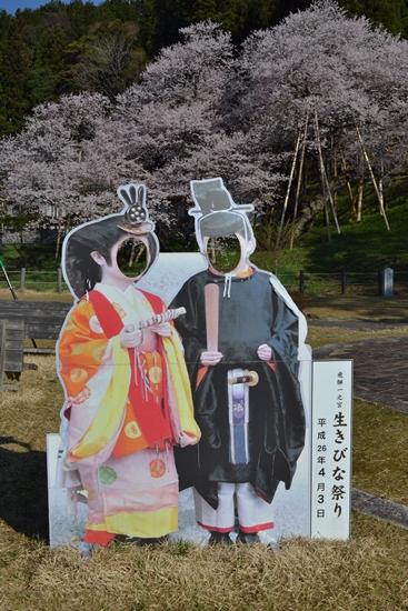 氷菓桜014