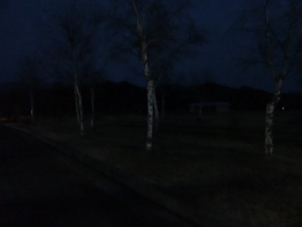 CIMG4270 (640x480)