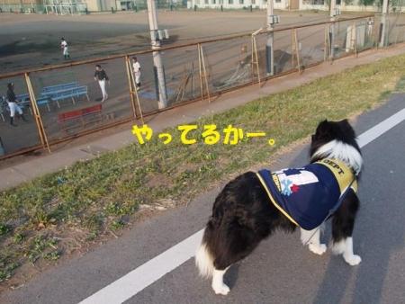 20140415_01_.jpg