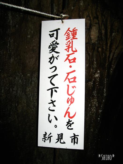 IMG_8525shiho.jpg