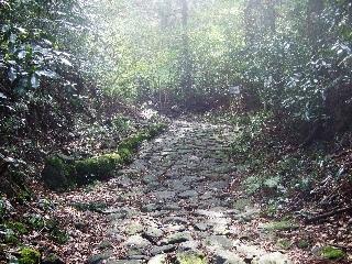 坂の傾斜_H22.04.18撮影