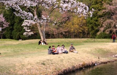 大沢池で団欒_H26.04.05撮影