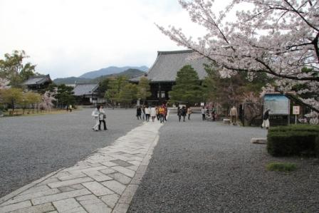 清涼寺本堂_H26.04.05撮影