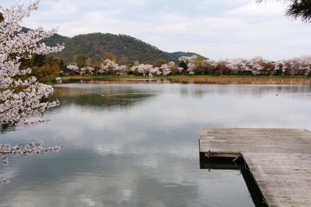五大堂から広沢池_H26.04.05撮影