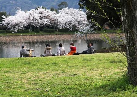 大沢池ののどかな風景_H26.04.05撮影