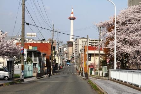 塩小路橋から京都タワーと桜の風景_H26.04.05撮影