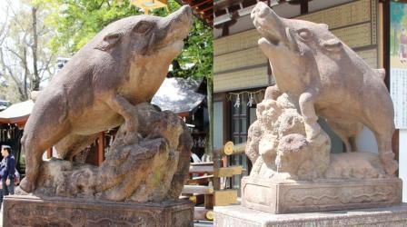 拝殿前の狛いのしし_H26.04.06撮影