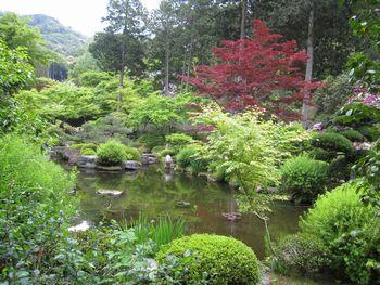 IMG_8285みむろとじ庭園