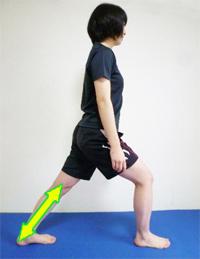 triceps_surae.jpg