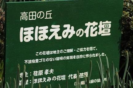 20140406ほほえみの花壇2a