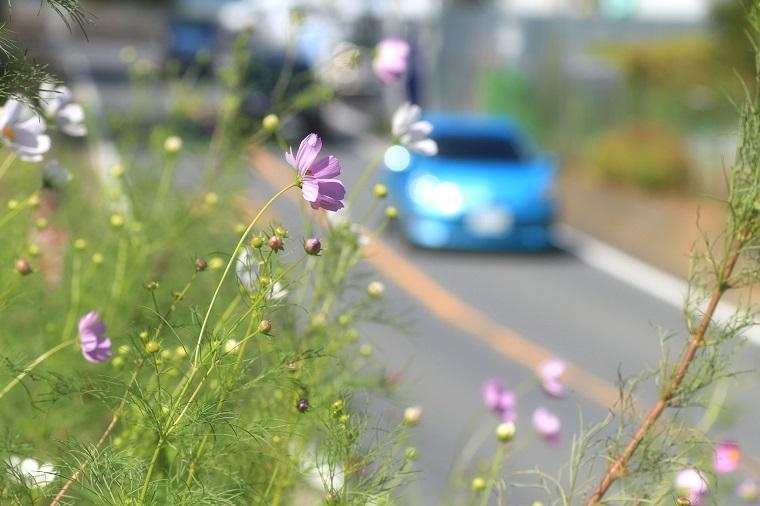 20130928新吉田-2a
