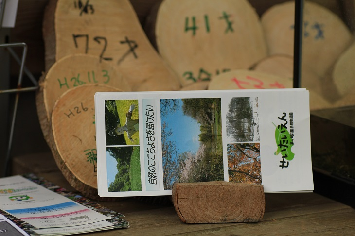 20141108茅ヶ崎自然生態園8a