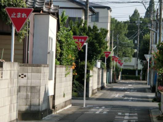 連続停まれ標識(埼玉)
