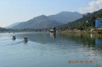 スワンボートが小鴨に見える140130