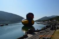 紅面鴨と記念撮影する人々140130