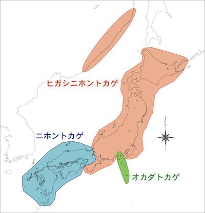 tokage-map.jpg