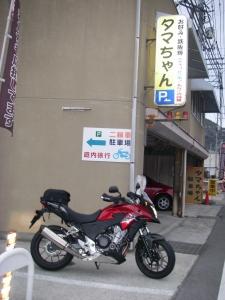 IMGP6306.jpg