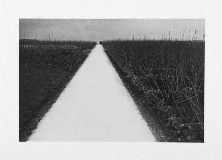 冬03_白い道