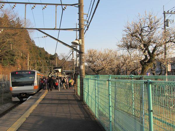 青梅市梅の公園最寄り、JR青梅線日向和田駅
