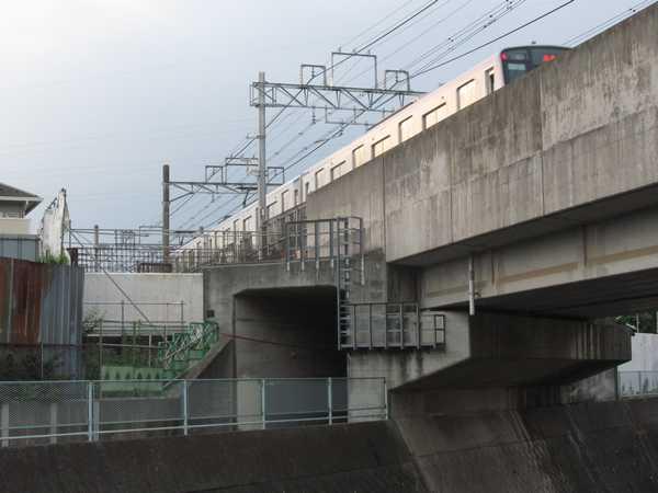 帷子川の橋梁新設工事。白い物体が新しい本線の桁を支える橋台。