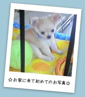 20140609_7.jpg