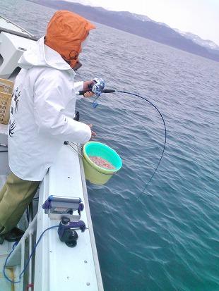 20140305新潟名立港 鯛釣り (14)